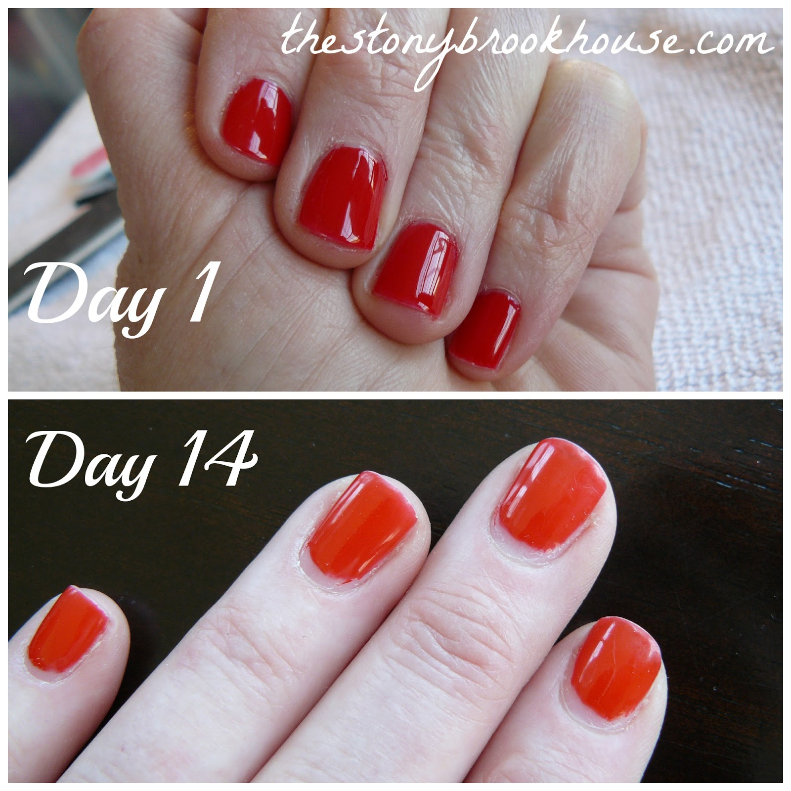 gel nails chipped after 4 days photo - 1